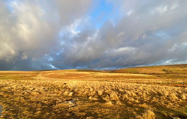 View across Dartmoor